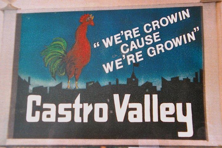 Castro Valley News Profile Picture
